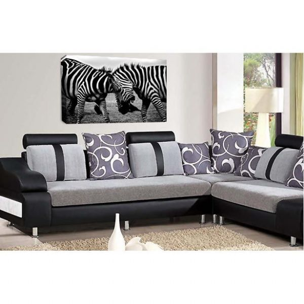 The Big Bang Zebra Canvas Wall Art Picture Print